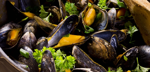 Bantry Bay Mussels
