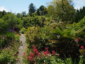Ballycommane Garden