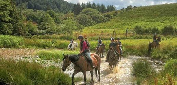 Bantry Bay Pony Trekking